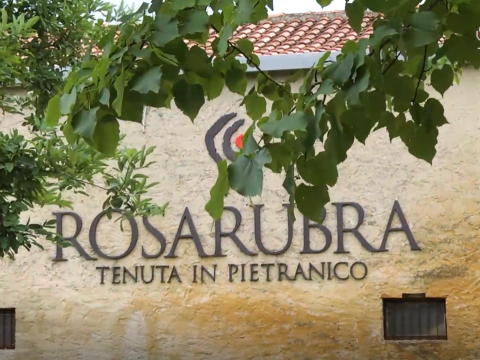 Wine Tour – Rosarubra Wine Party 2018